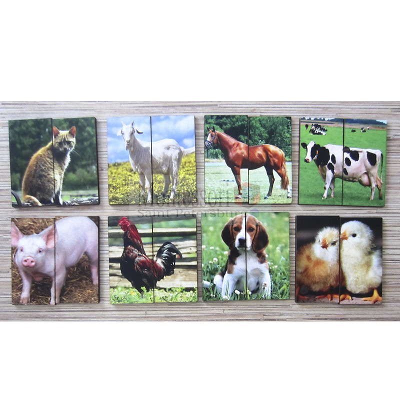 Producer animals